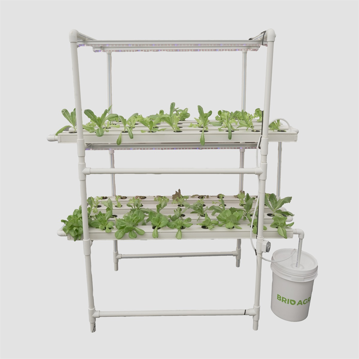 Agrimiracle DUO Hydroponics Grower's Kit (72 Planter NFT)