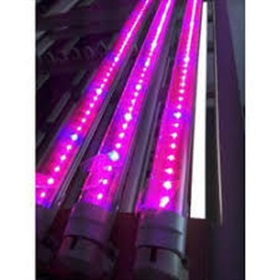 Image of Spectrum Controlled Grow Light - For Hydroponic System